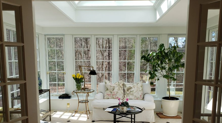 orangery with ficus